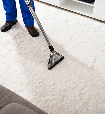 Carpet Cleaning Brisbaneane city