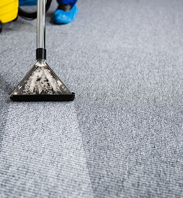 Carpet-cleaning-Norwood