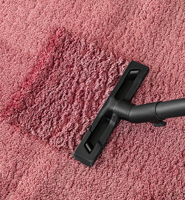 Carpet cleaning Mitchell Park
