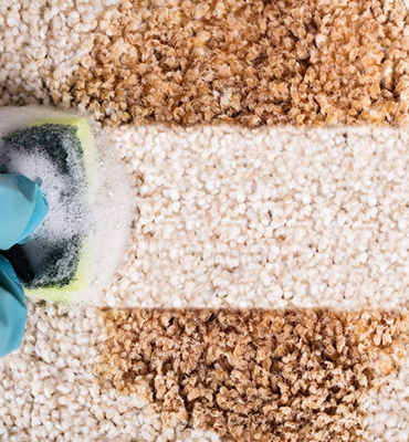 carpet-cleaning-Surfers-Paradise